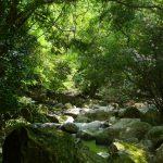 三重県の心理カウンセリングを探す